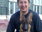 Профессиональная дрессировка собак в Москве