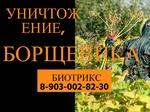Уничтожение, обработка борщевика в Серпухове