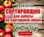Сортировщик урожая яблок